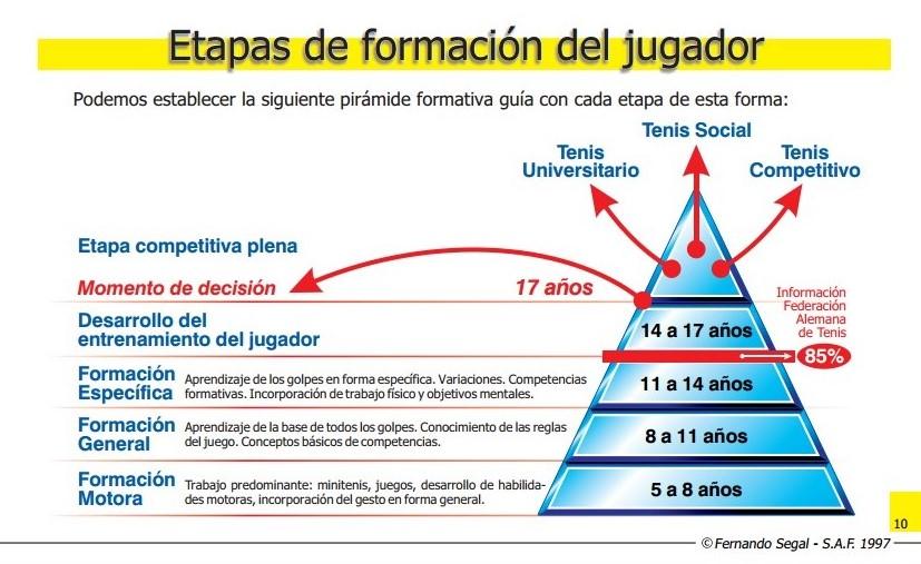 ETAPAS DE FORMACIÓN DEL JUGADOR1.docx